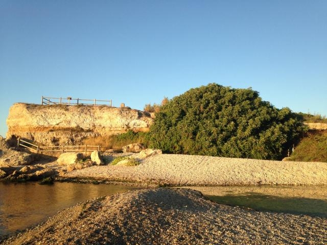 Senia: mar i figuera